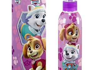Paw Patrol Skye And Everest Splash